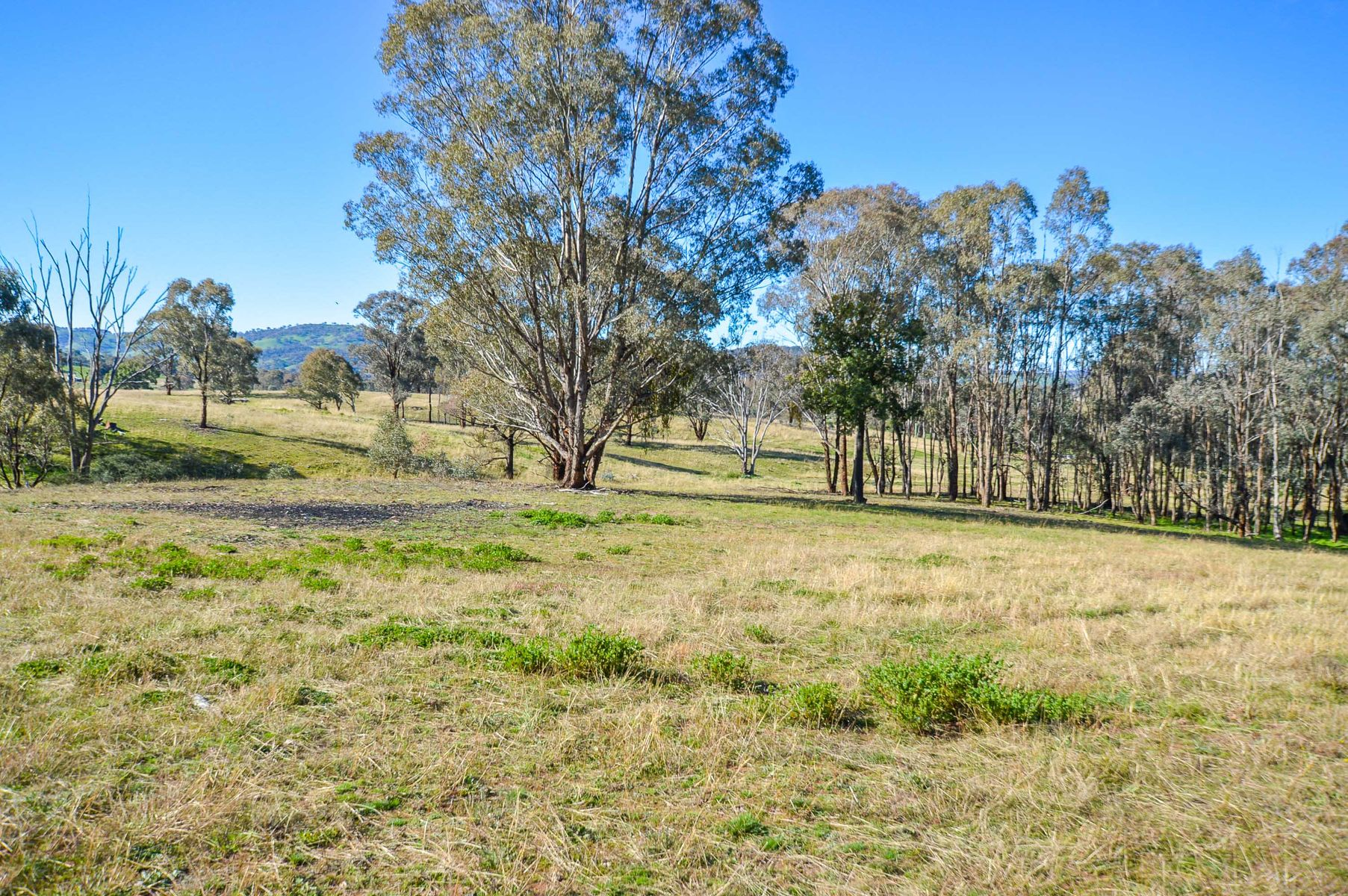 Lots 7-9, 206 Lesters Lane, Mudgee, NSW 2850