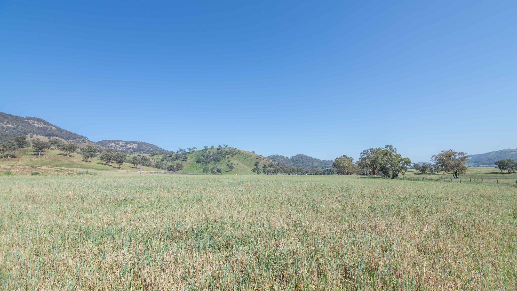1532 Castlereagh Highway, Mudgee, NSW 2850