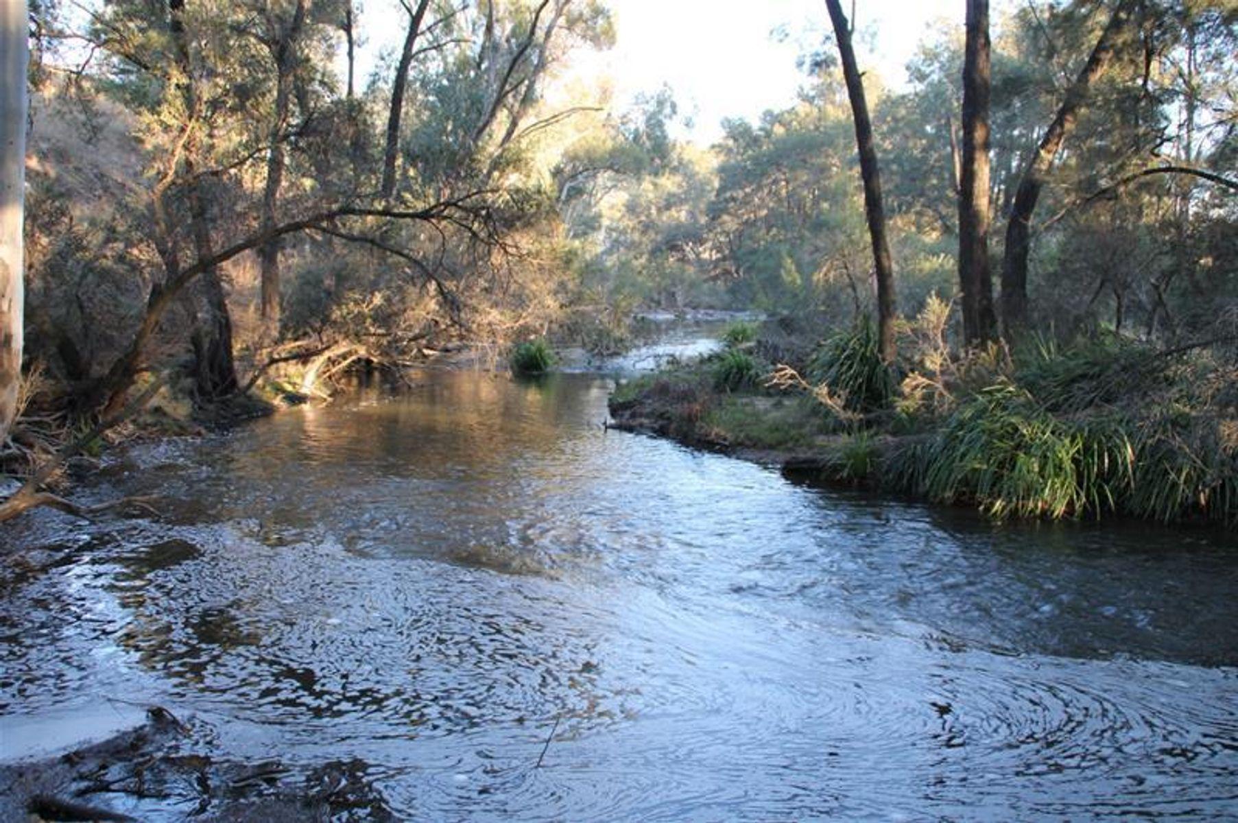 Lot 48  Mole River Road, Tenterfield, NSW 2372