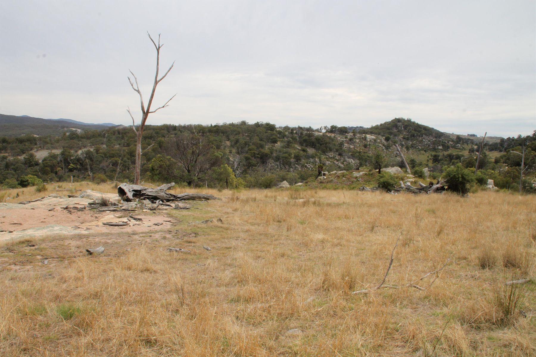 Lot 58 Gunyah Road, Tenterfield, NSW 2372