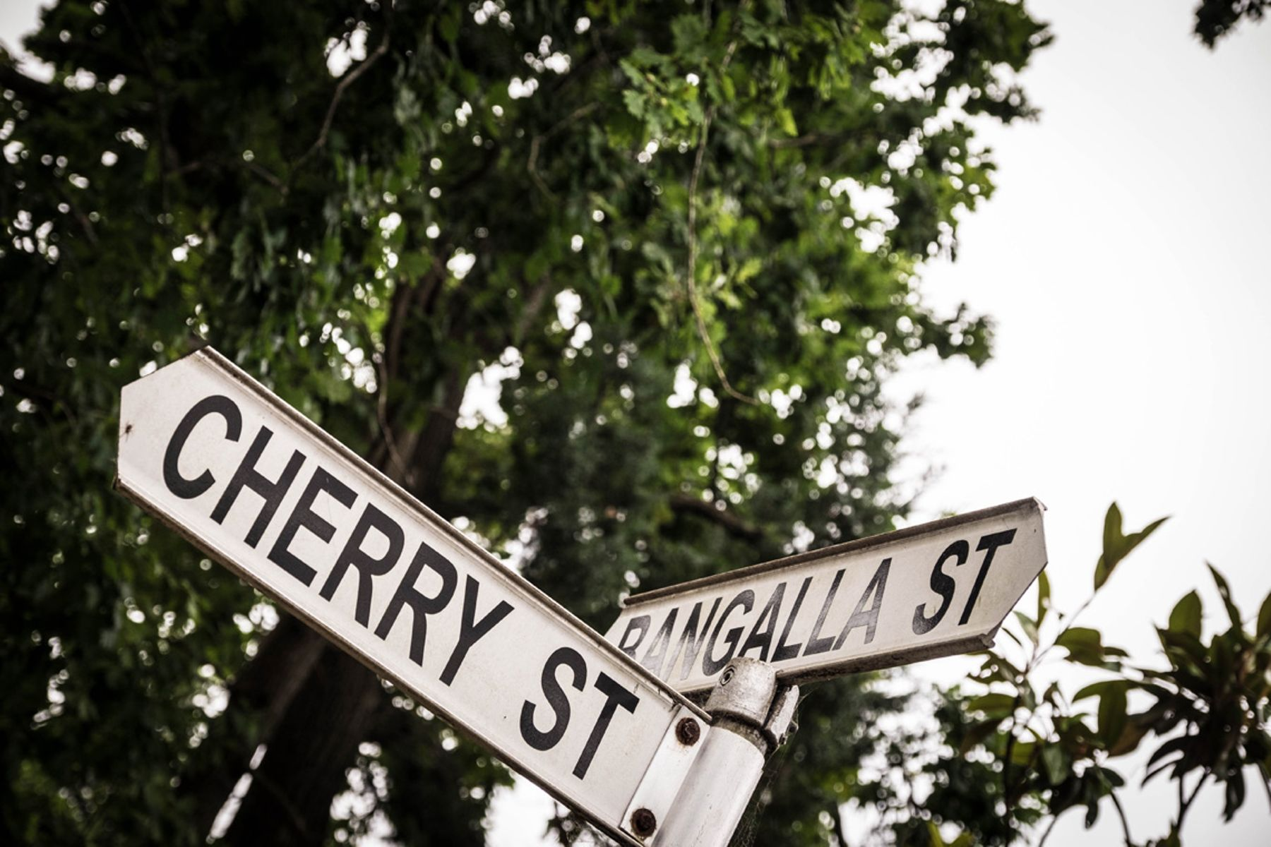 MB - Warrawee - Street Signs