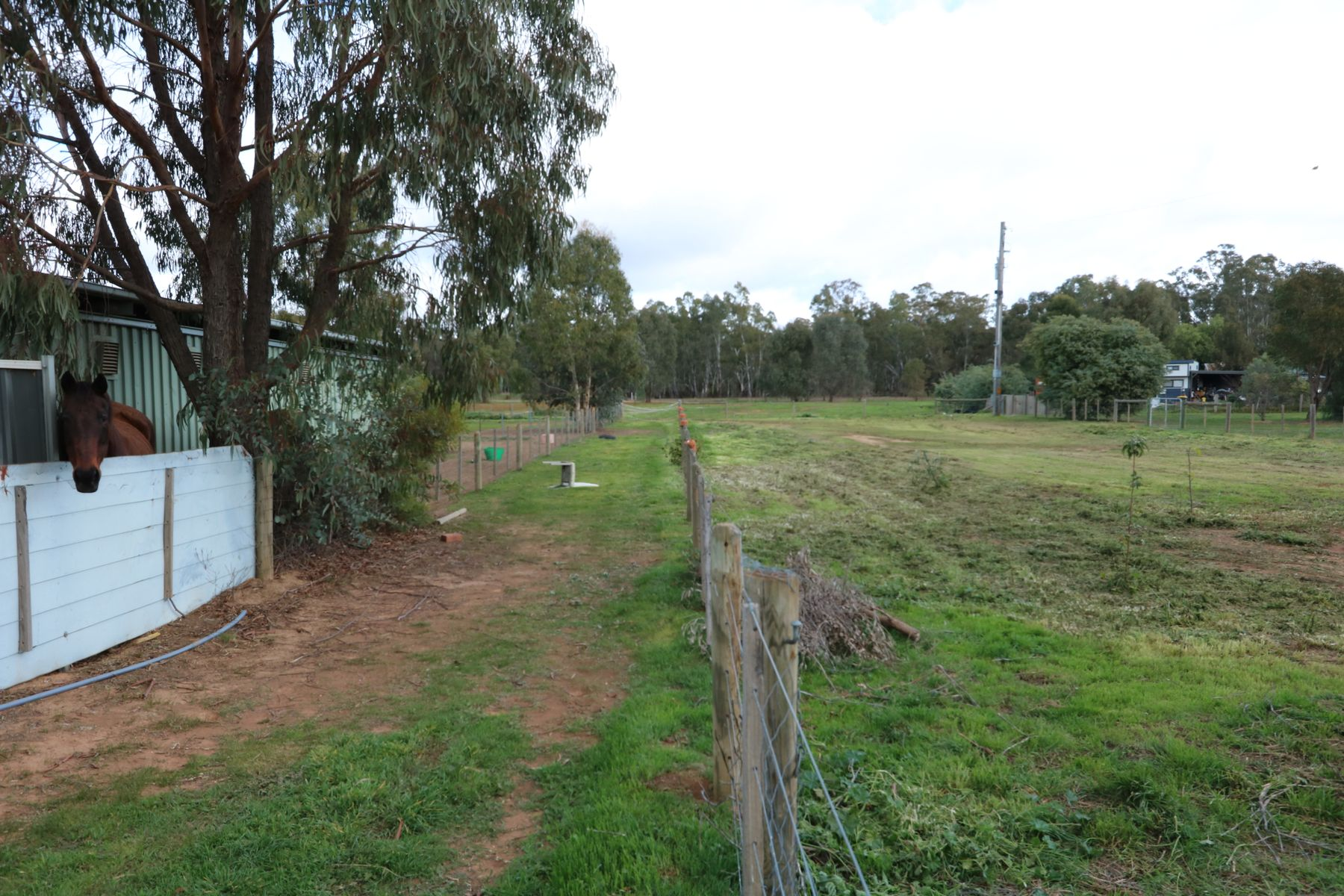 54 Middle Road, Dunolly, VIC 3472