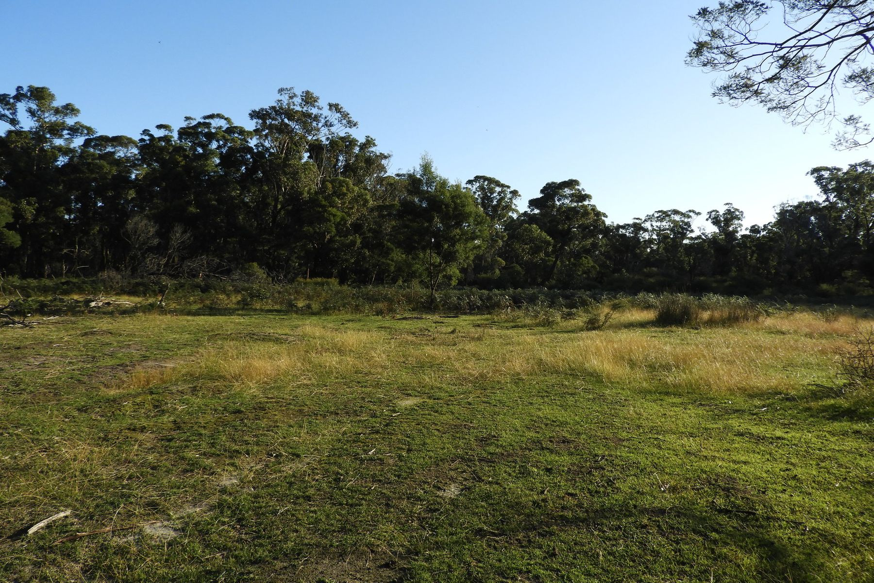 Lot Crown Allo/17, 240 Centre Road, Raymond Island, VIC 3880