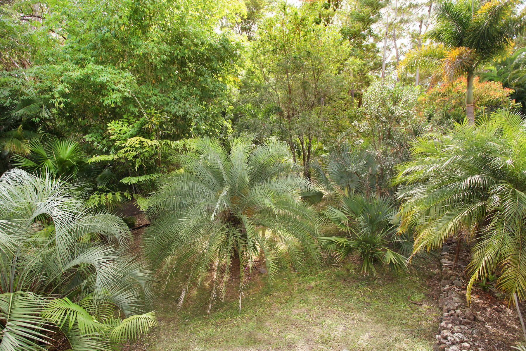 106 Wappa Falls Road, Yandina, QLD 4561