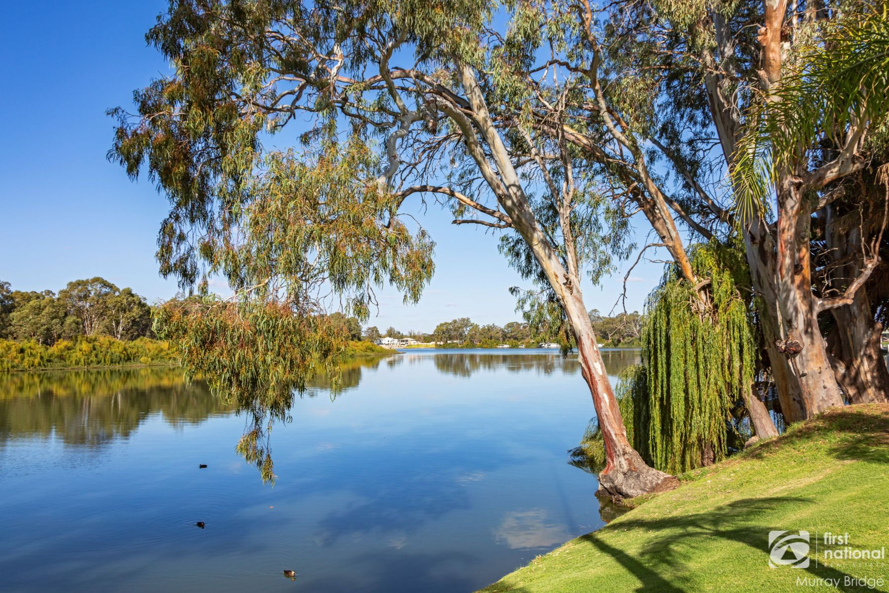 Lot 102 Melaleuca Way, Murray Bridge, SA 5253
