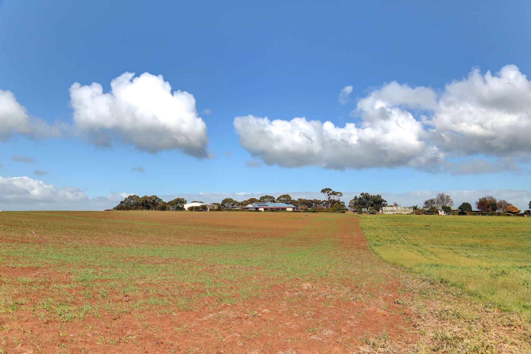Lot 281 Long Flat Road, Murray Bridge, SA 5253