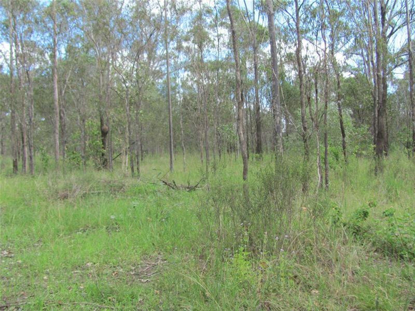 Lot 65 Taunton Road, Euleilah, QLD 4674