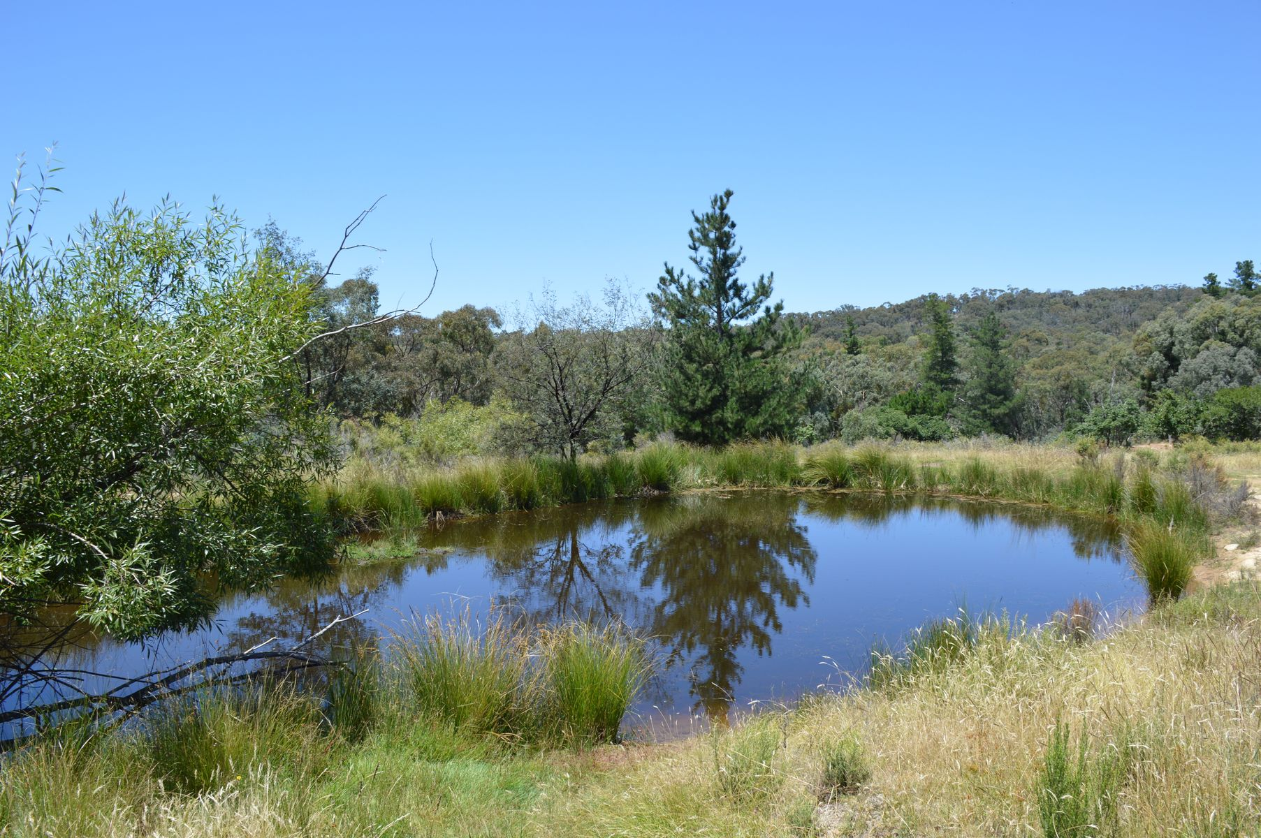 6050 Hill End Road, Mudgee, NSW 2850