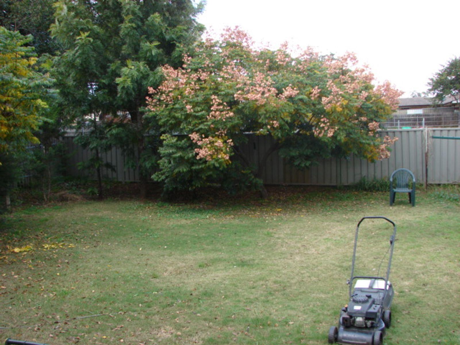 33 Tobruk Ave, Muswellbrook, NSW 2333