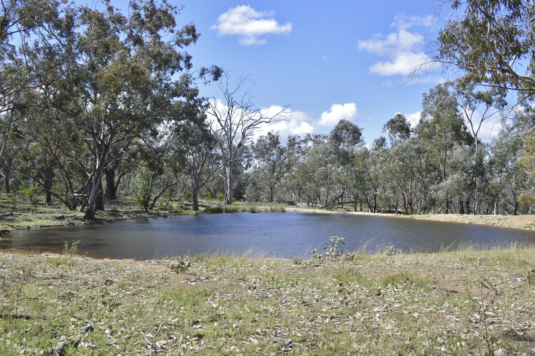 1521 Wallawaugh Road, Mudgee, NSW 2850