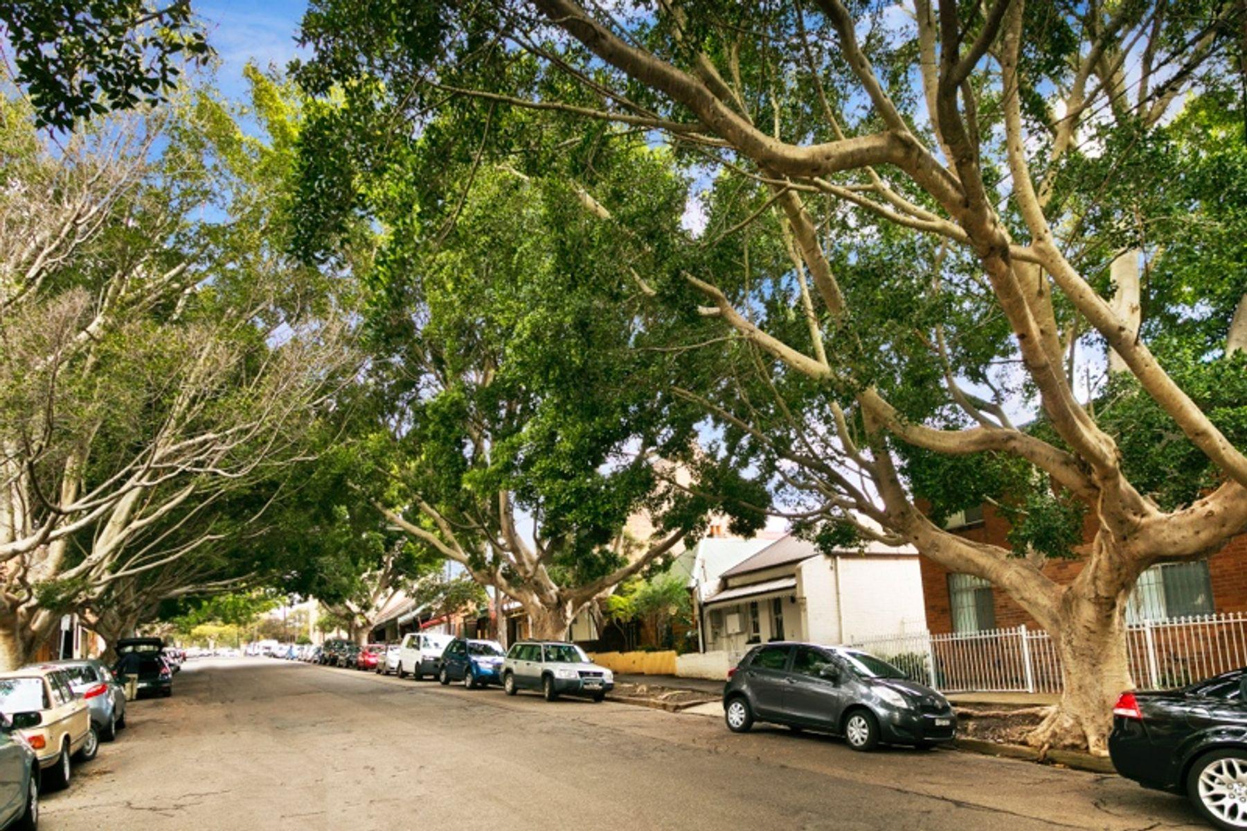 2/37 Northwood Street, Camperdown, NSW 2050