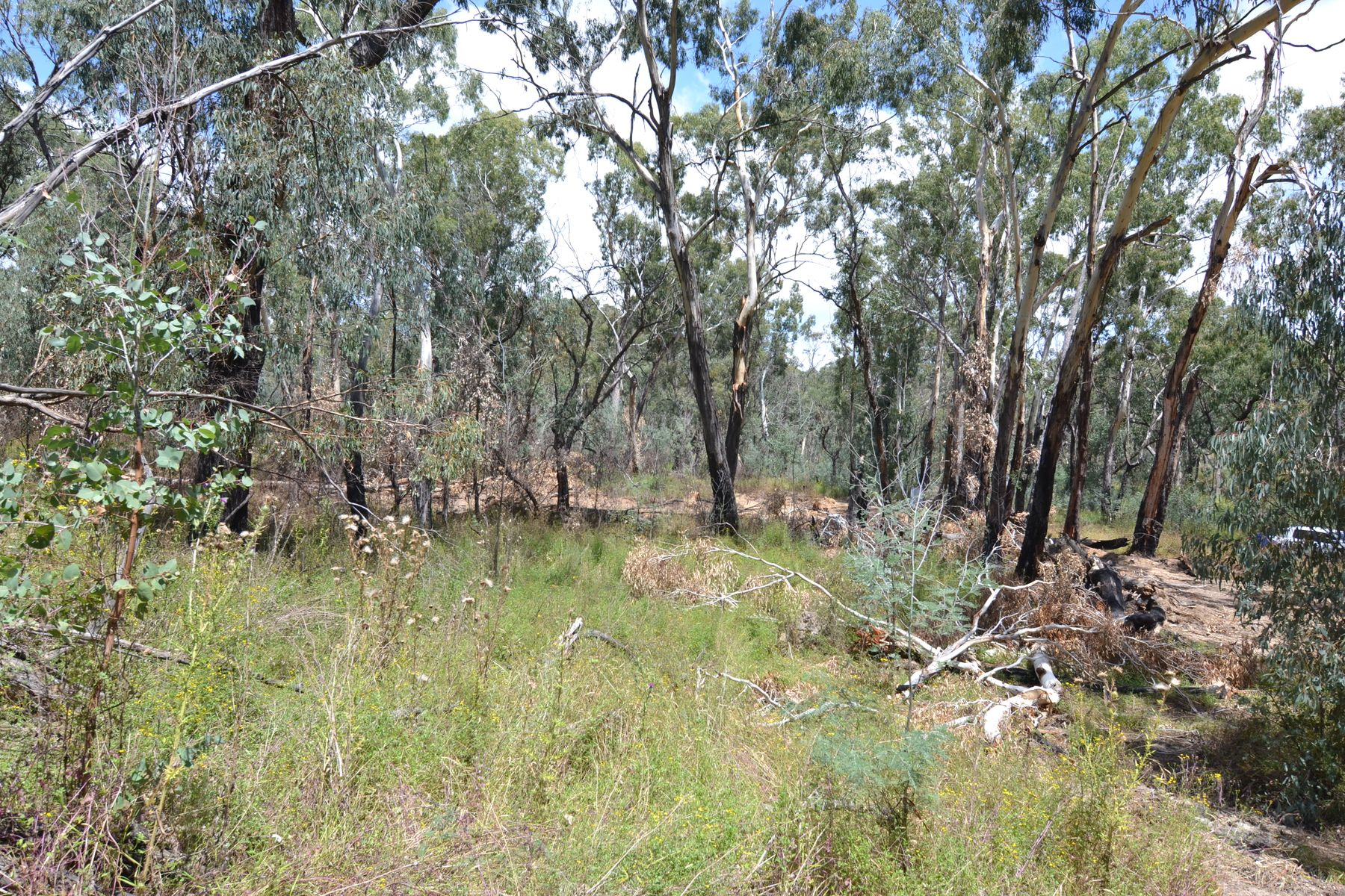 Lot 2 Merinda Street, Mudgee, NSW 2850