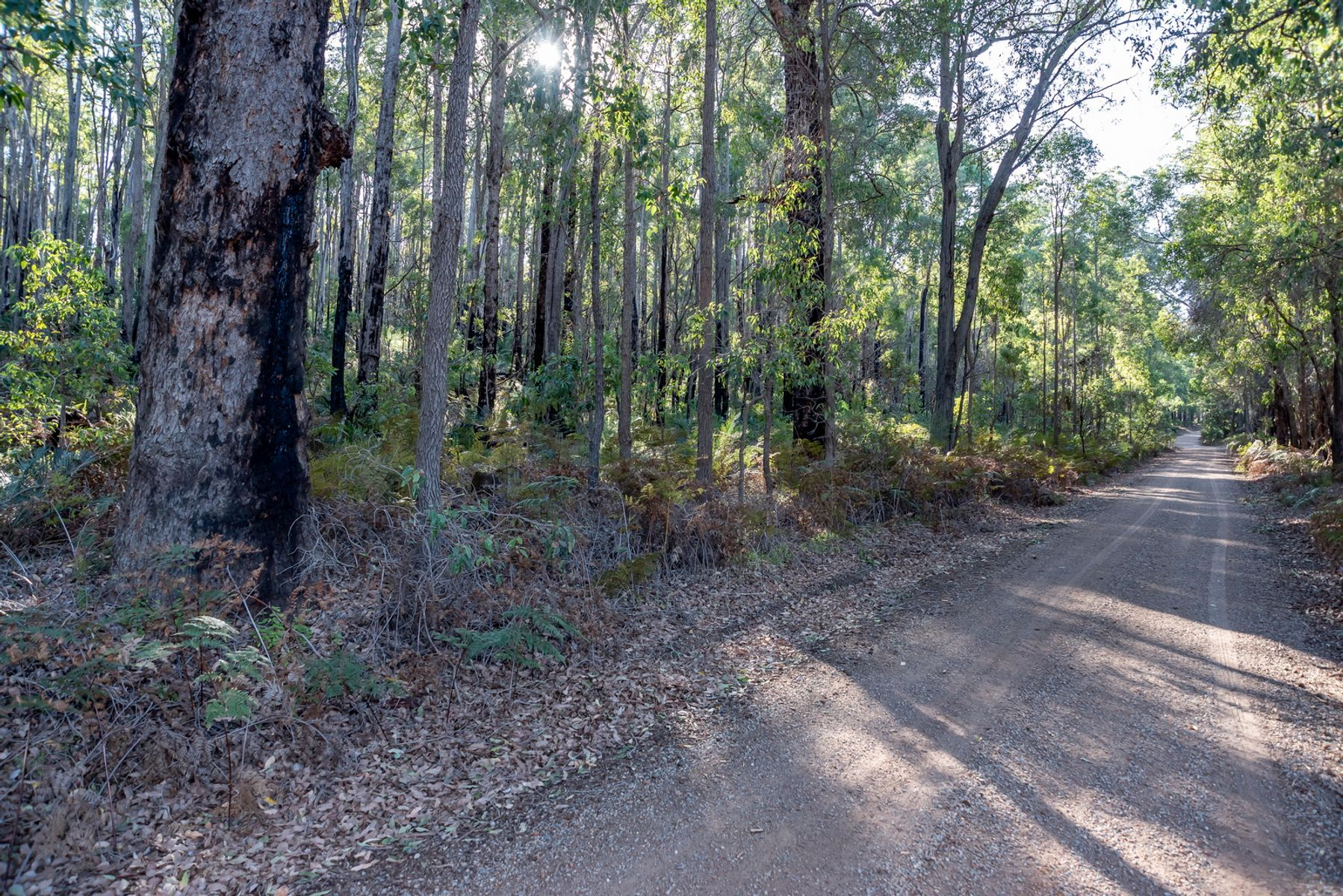 Lot 680 Linto Road, Dwellingup, WA 6213