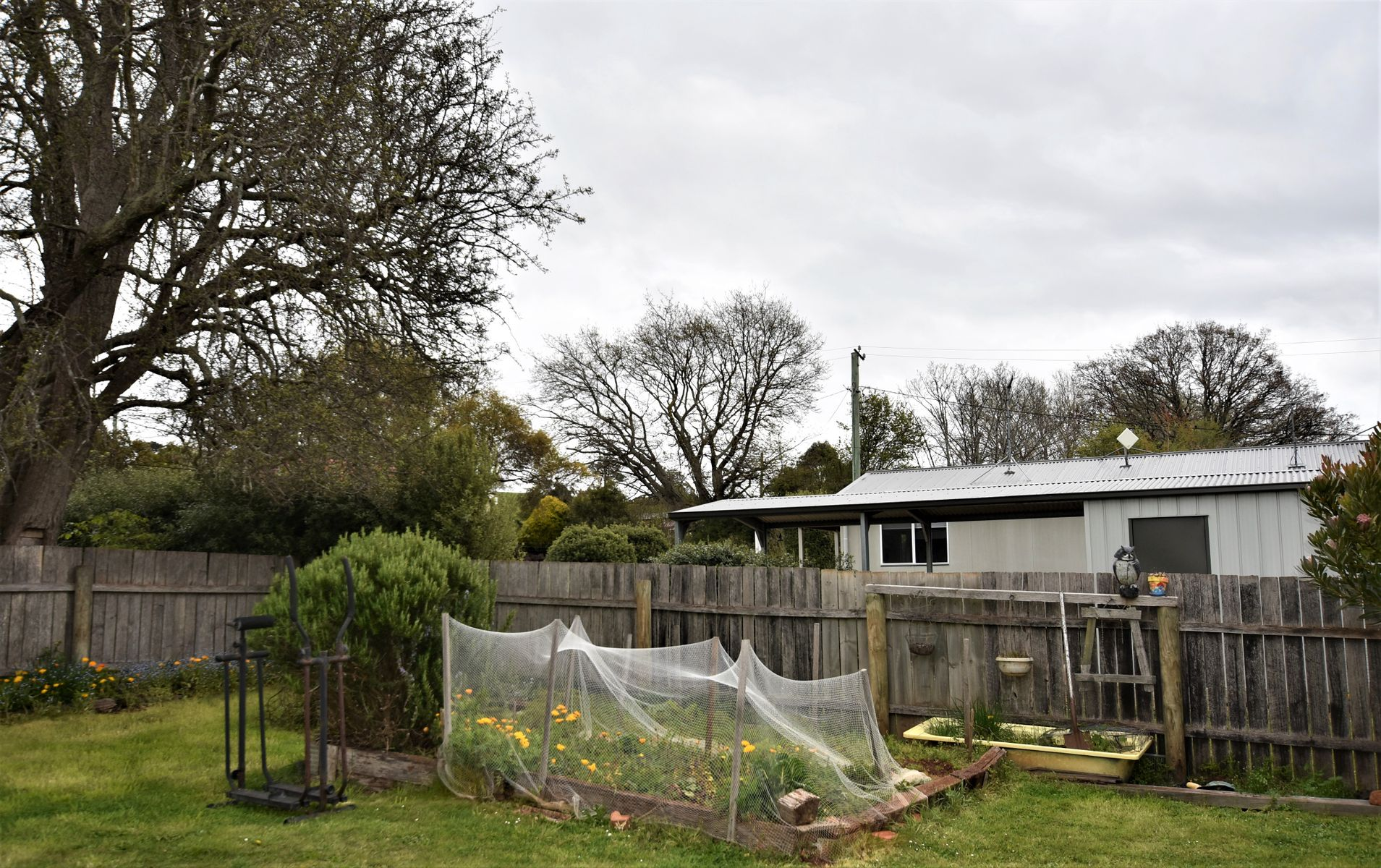 3955 Meander Valley Road, Exton, TAS 7303
