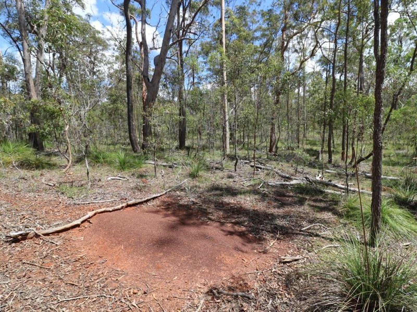 Lot 47 Mullers Road, Redridge, QLD 4660