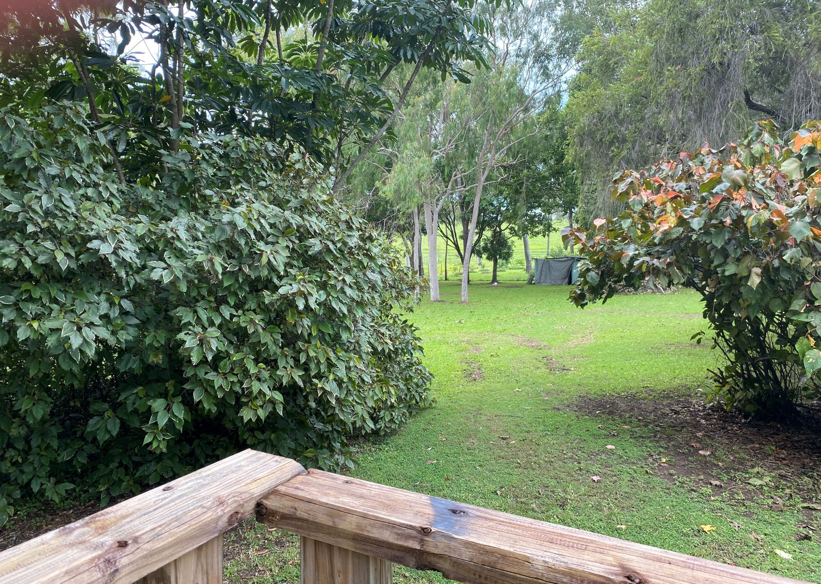 77 Windsor Drive, Hay Point, QLD 4740