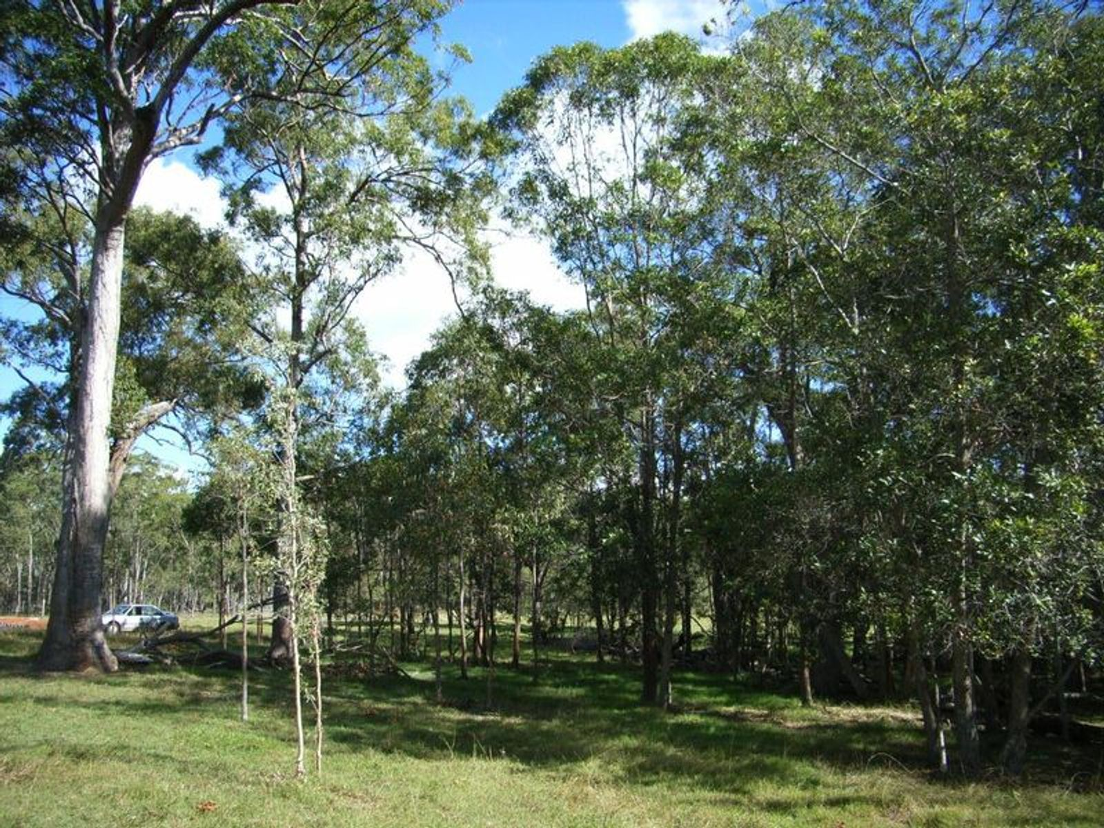5 Rosedale Road, Mullett Creek, QLD 4670