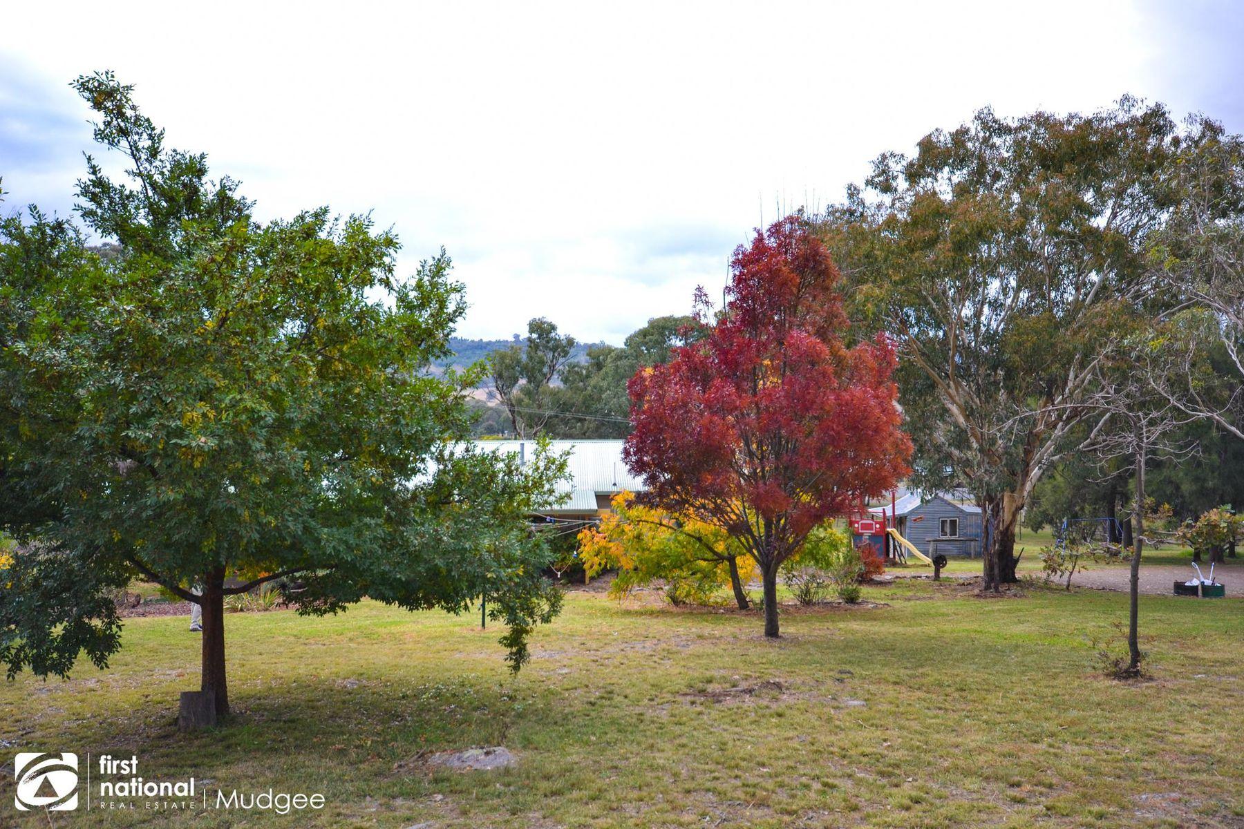 30 Bayly Street, Lue, NSW 2850