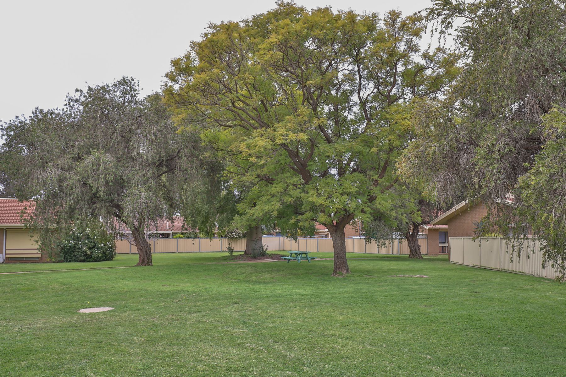 19 Hibiscus Drive, Mildura, VIC 3500