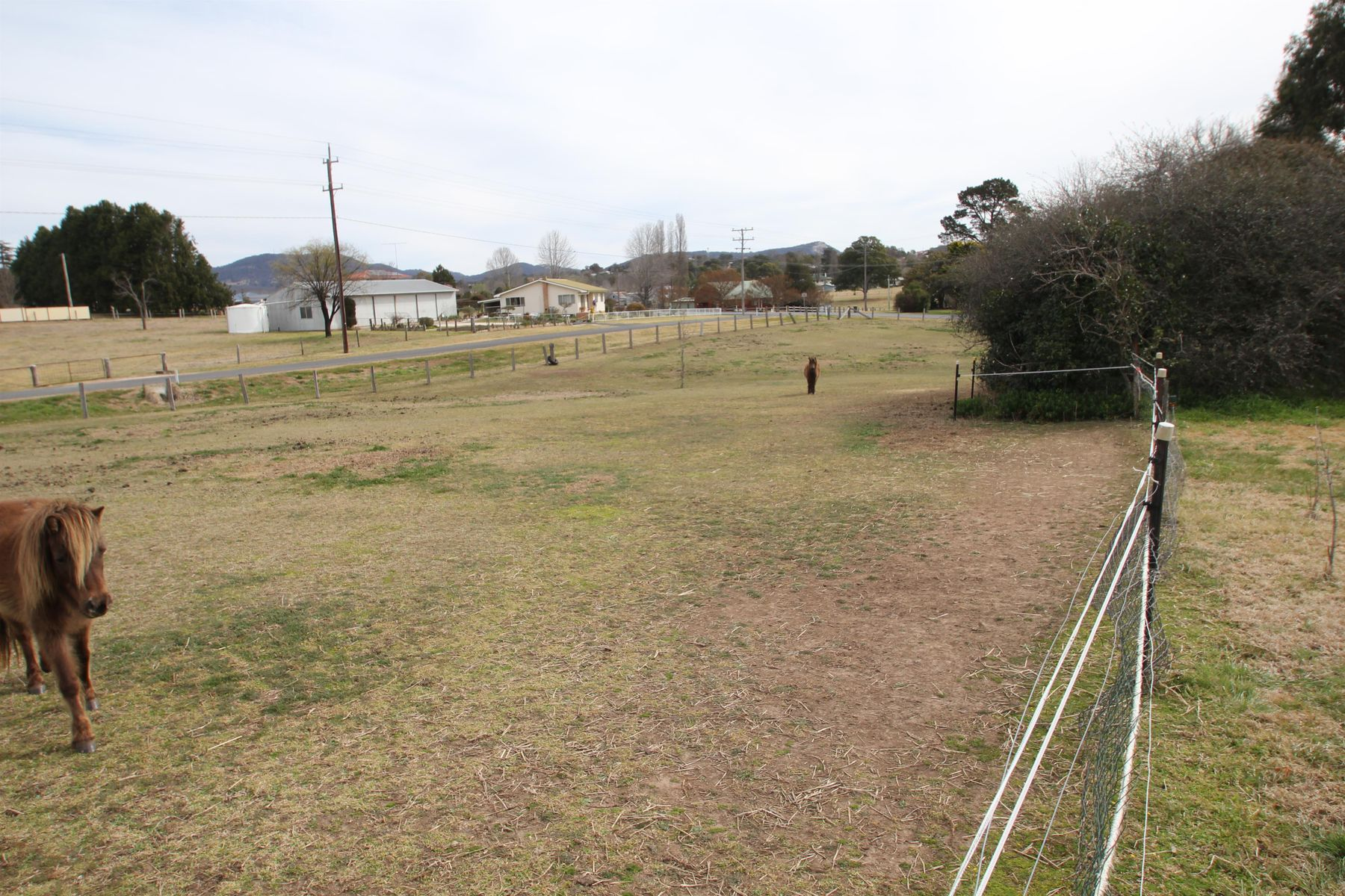 104 Mount Lindesay Road, Tenterfield, NSW 2372