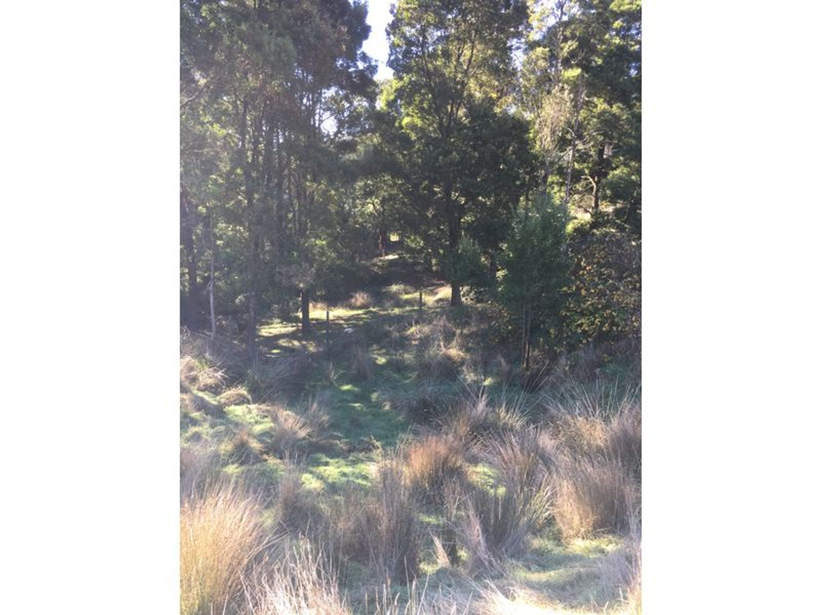 Lot 42 Thomson Road, Hazelwood South, VIC 3840