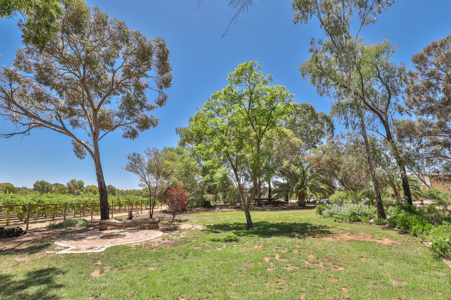 44 Ginquam Avenue, Nichols Point, VIC 3501