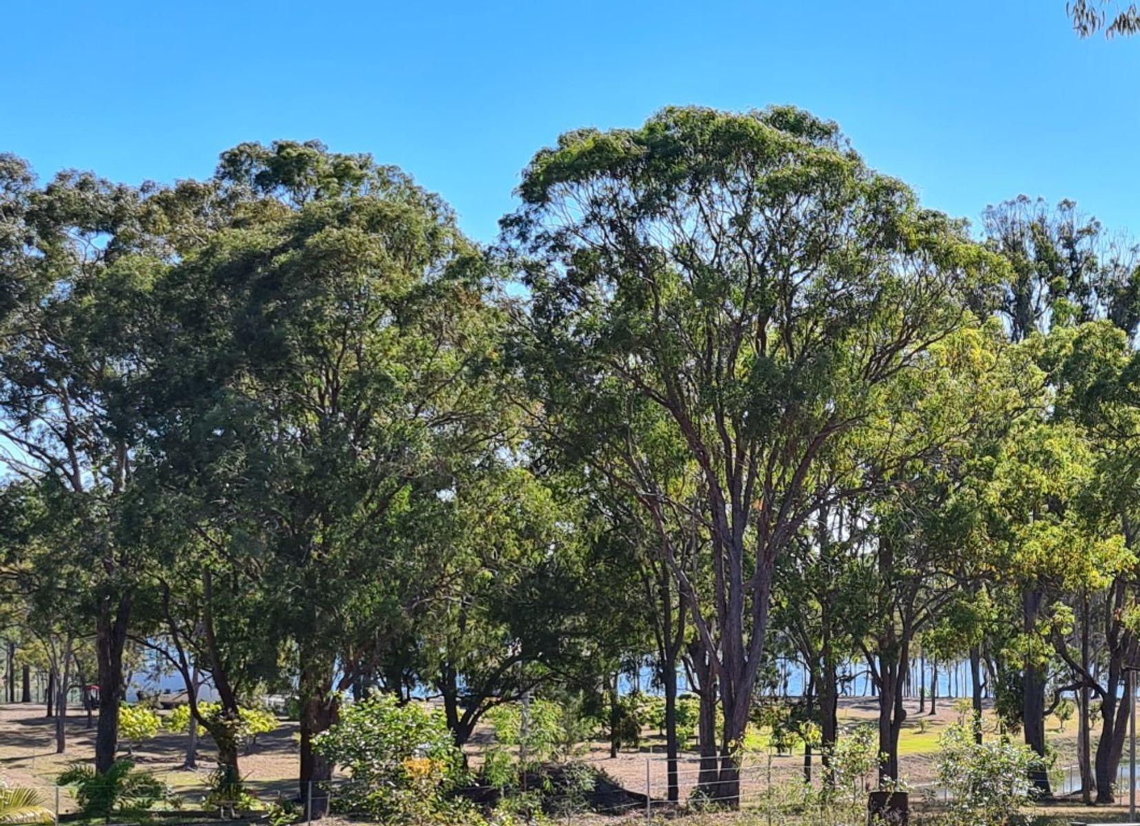 Lot 2 Coast Road, Baffle Creek, QLD 4674