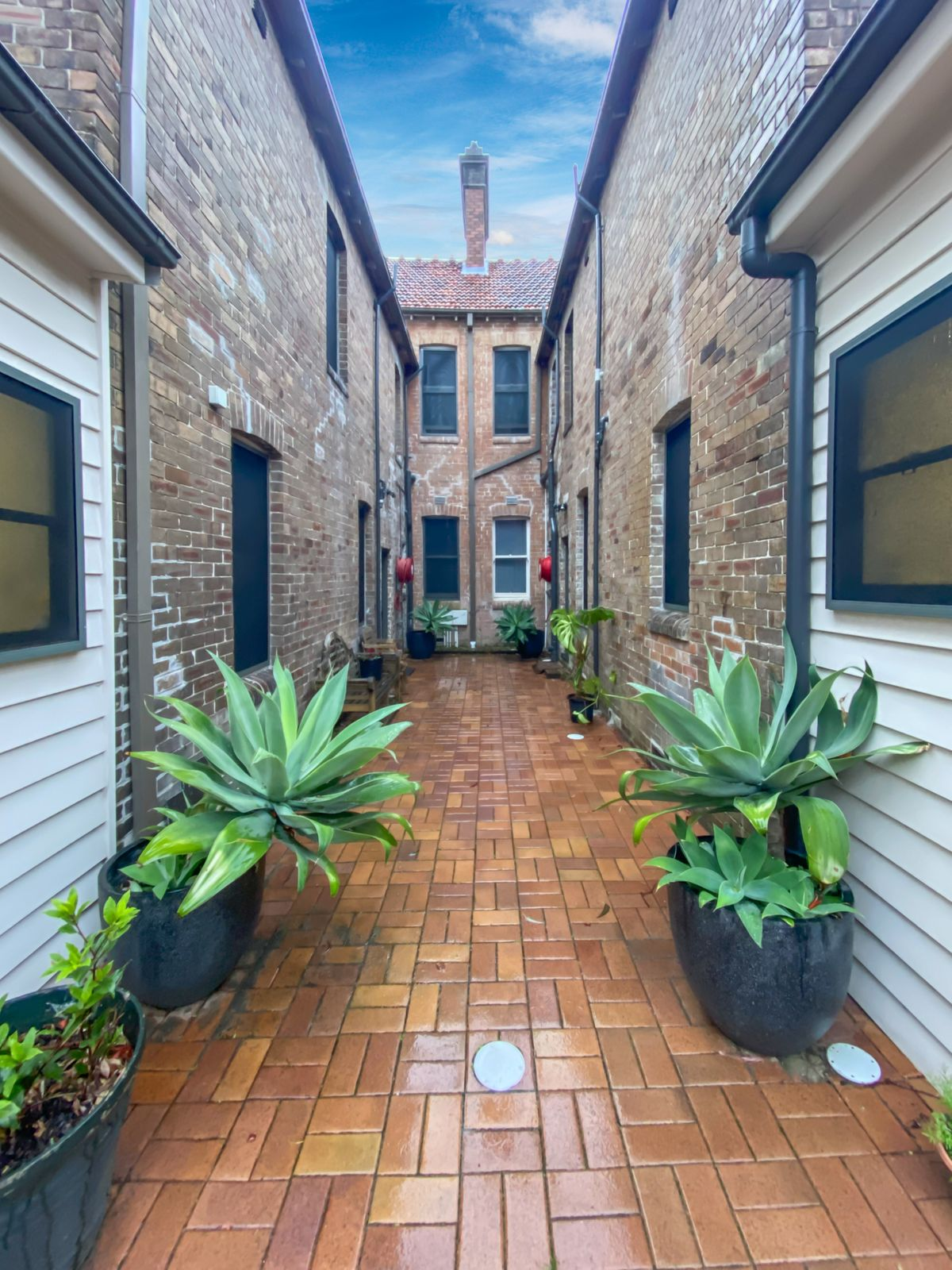 62 Hereford Street, Glebe, NSW 2037