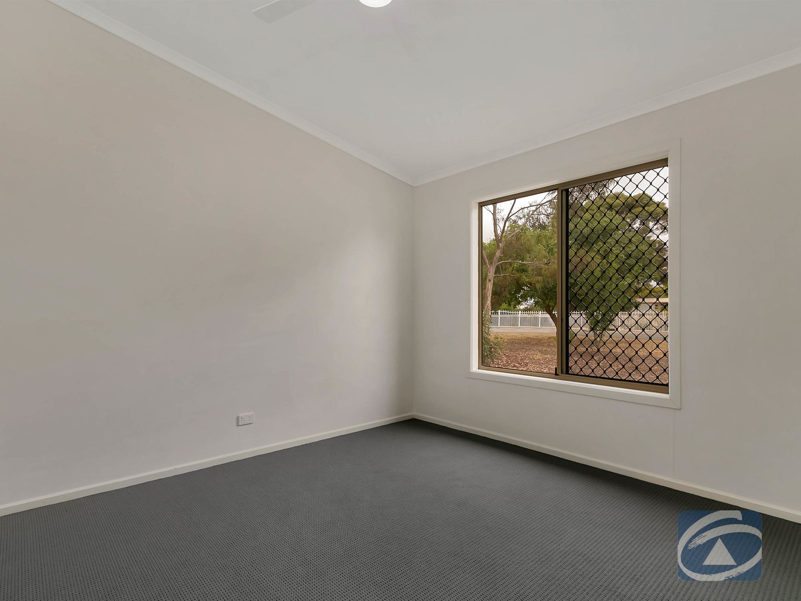16 Schaefer Street, Freeling, SA 5372