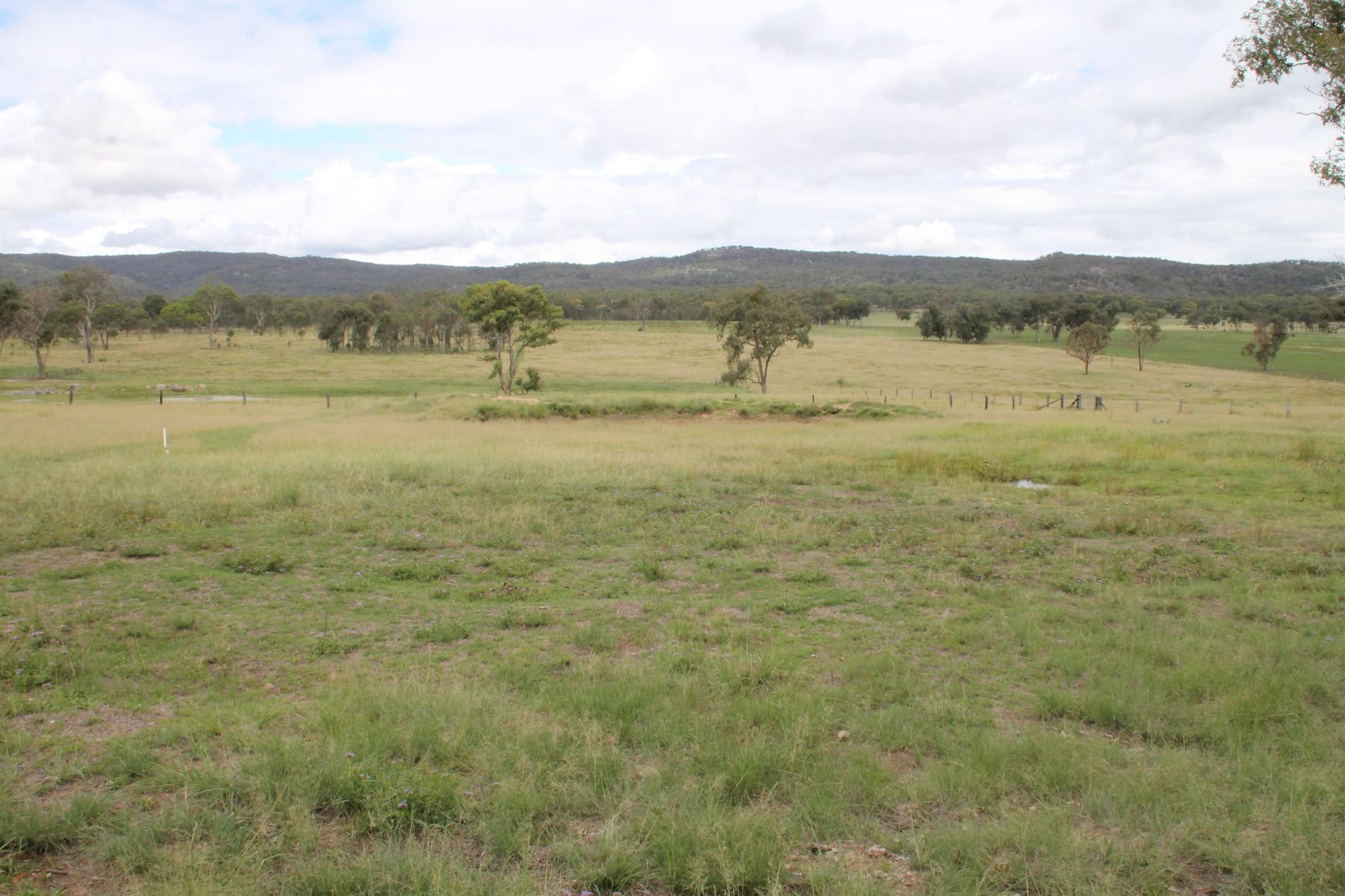 Lot 83 New England Highway, Jennings, NSW 4383