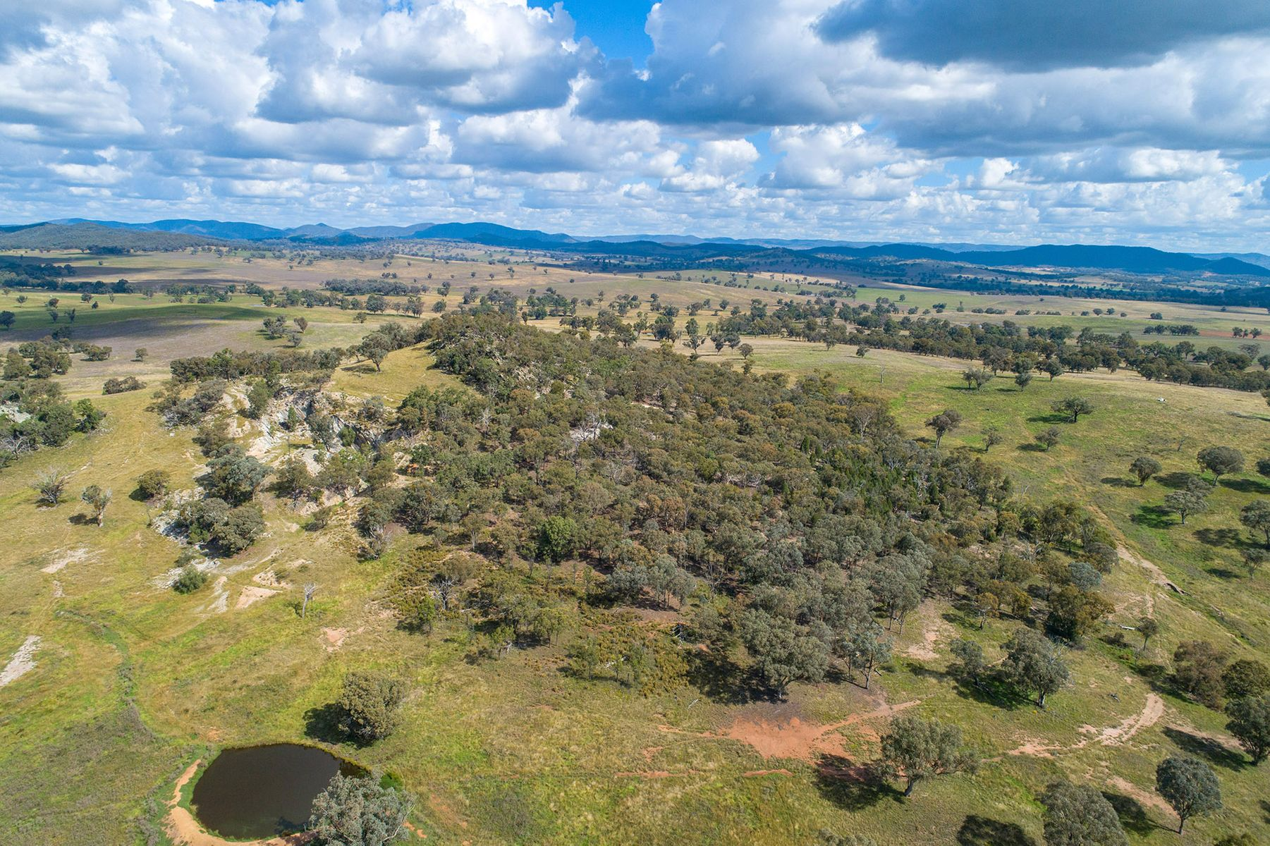 22 Ron Lynch Road, Mudgee, NSW 2850