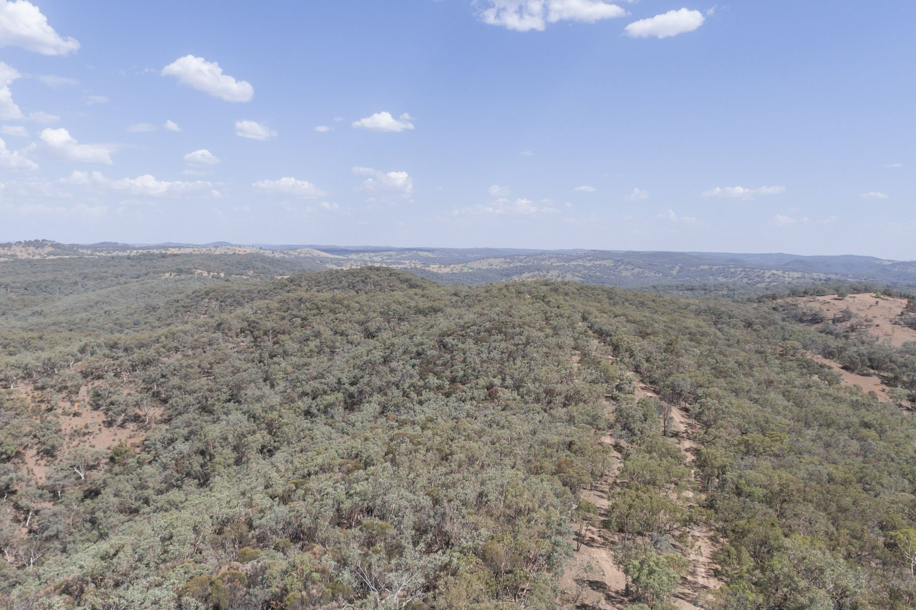 Lot 28 & 31 Merendee Road, Mudgee, NSW 2850
