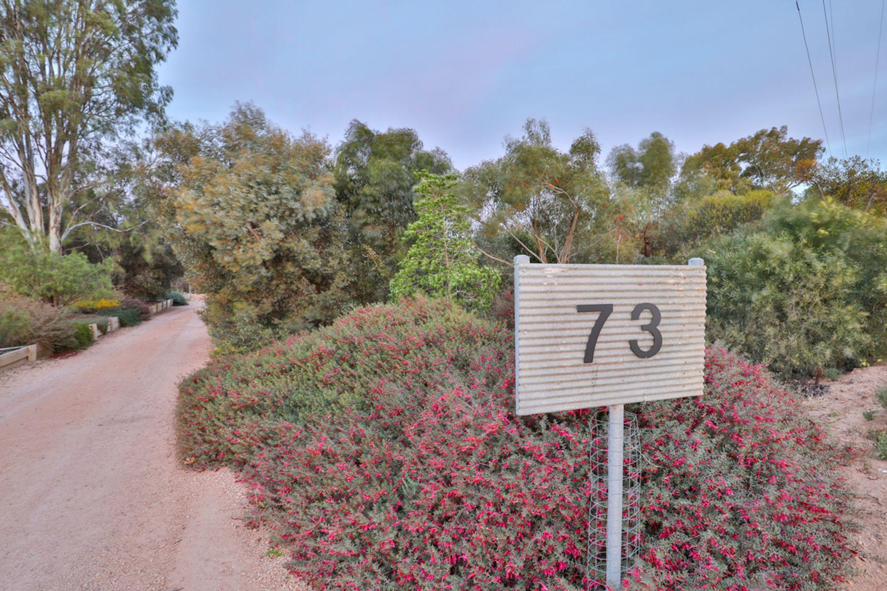 73 Billabong Road, Nichols Point, VIC 3501