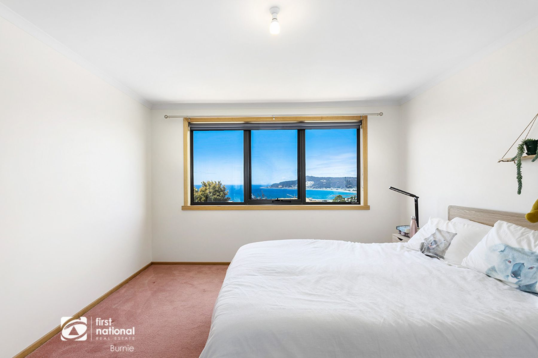 17 Grandview Avenue, Park Grove, TAS 7320