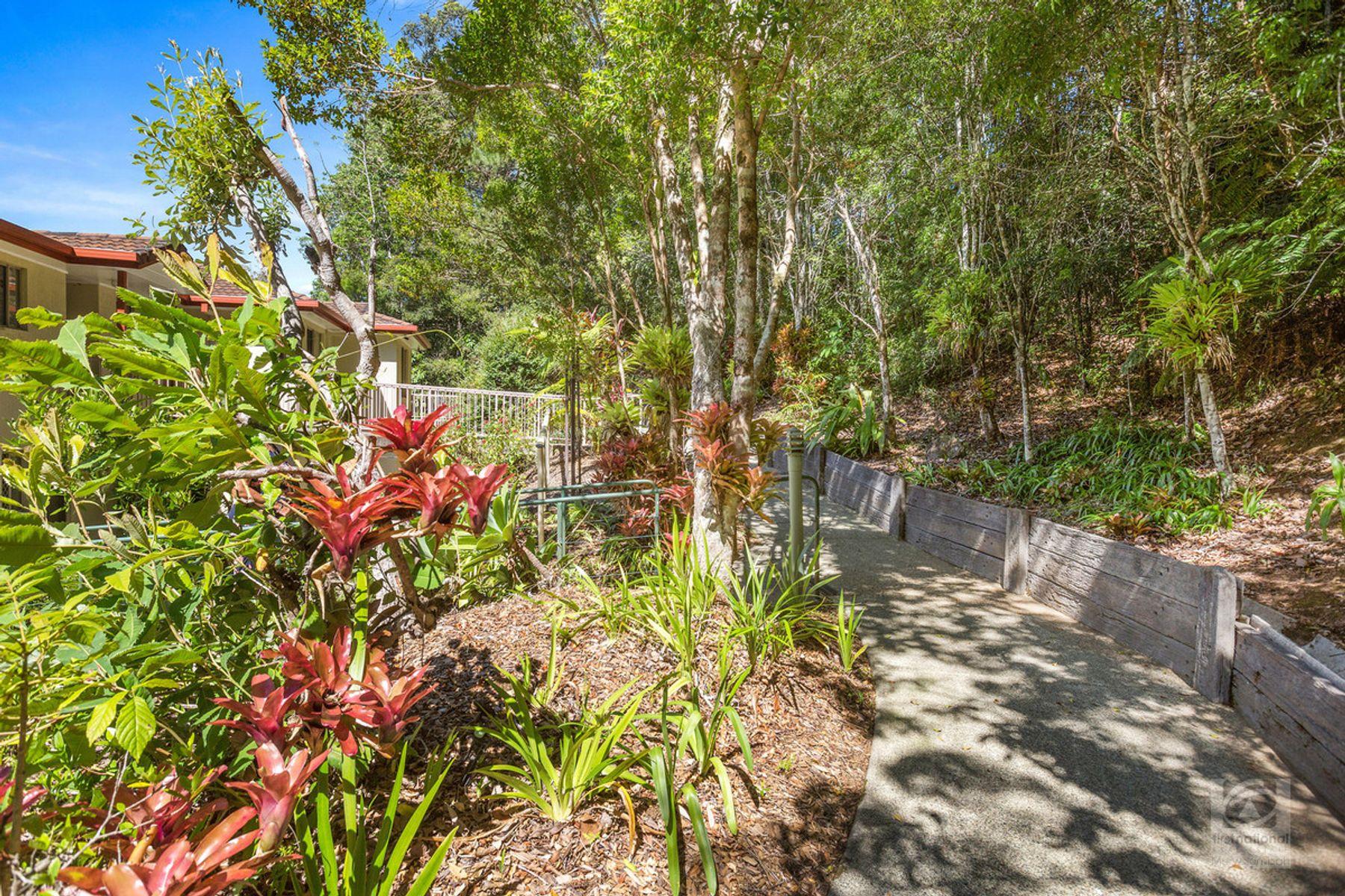 105 Treetops Boulevard, Murwillumbah, NSW 2484
