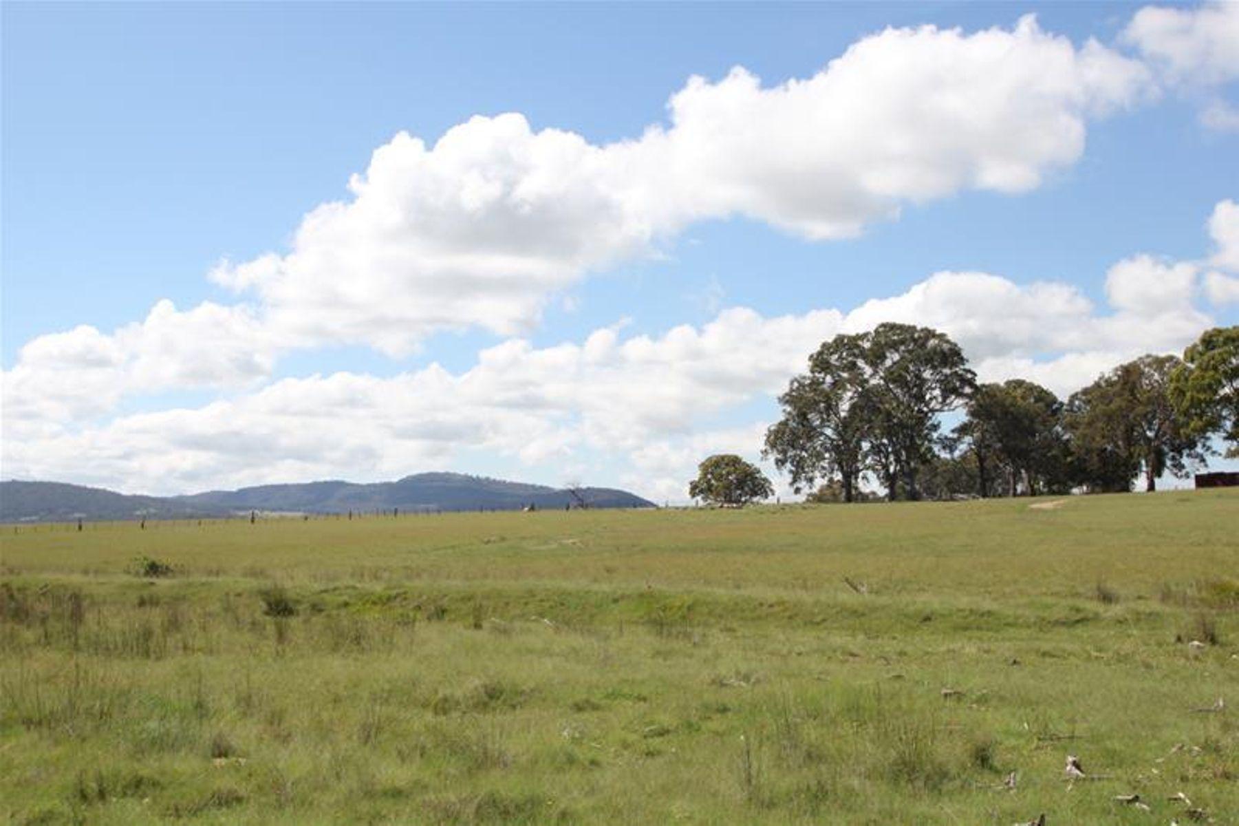80 Sunnyside Loop Road, Tenterfield, NSW 2372