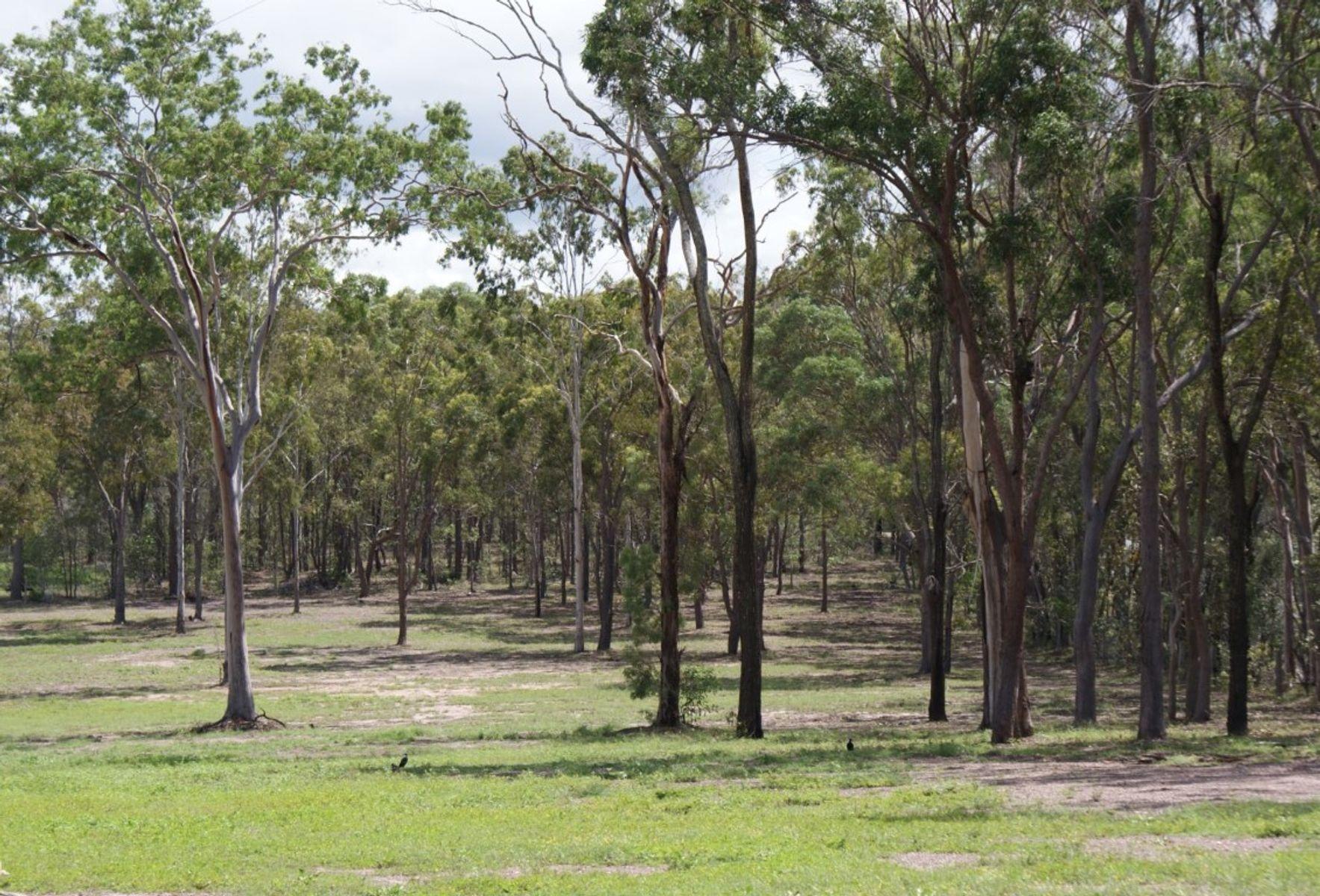 23 Boat Ramp Road, Baffle Creek, QLD 4674