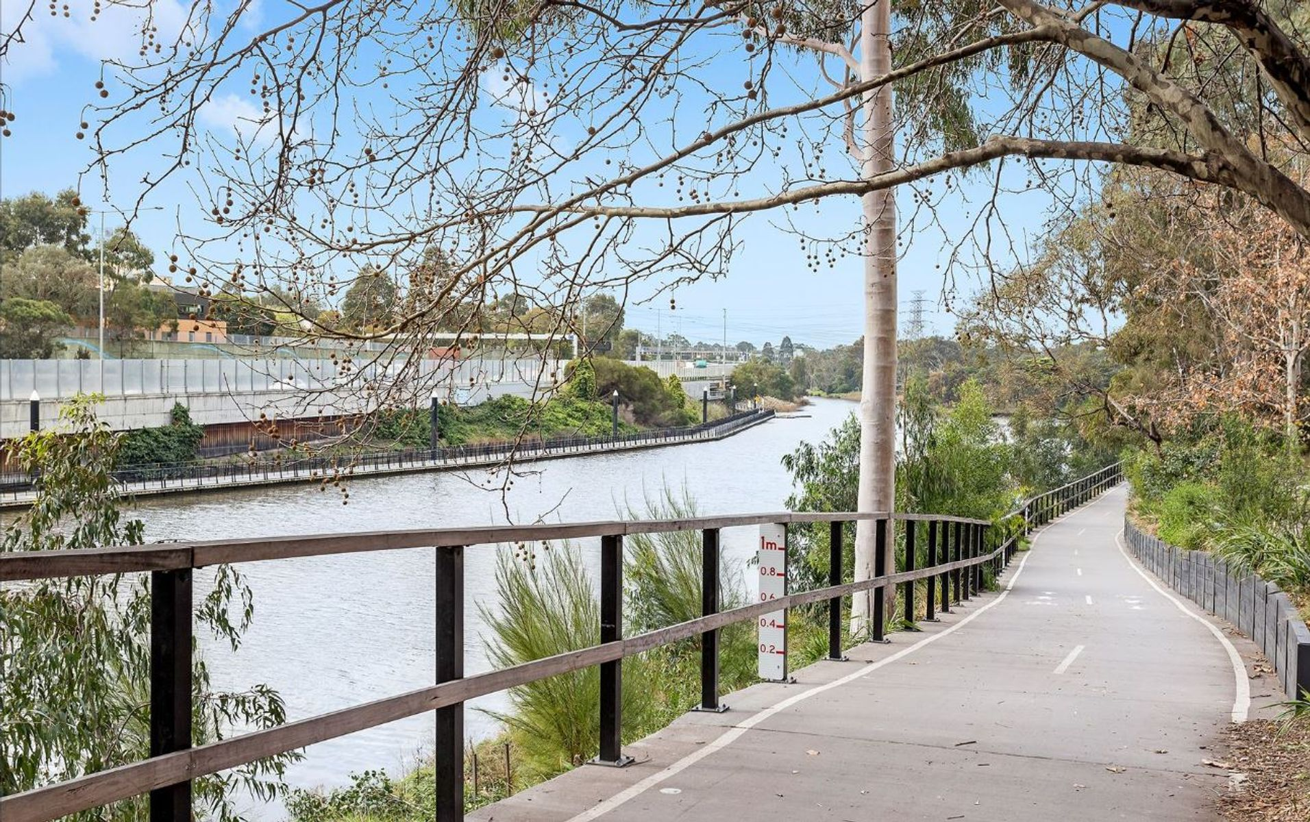 Yarra River & Bike Path