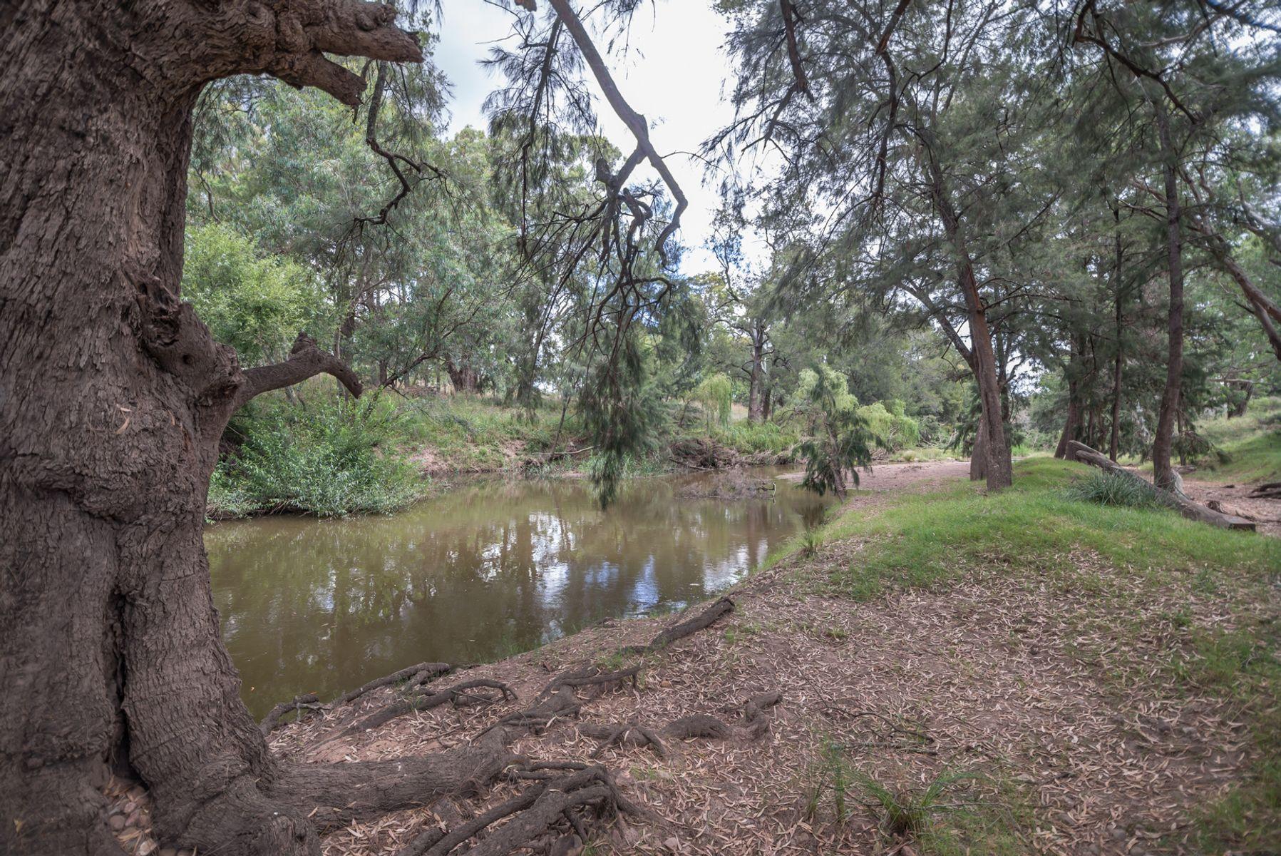 266 Gum Gully Road, Gulgong, NSW 2852