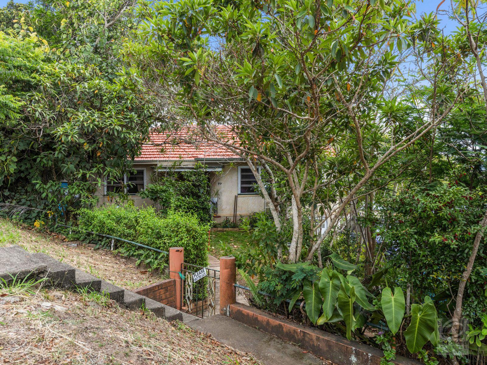 77 Byangum Road, Murwillumbah, NSW 2484