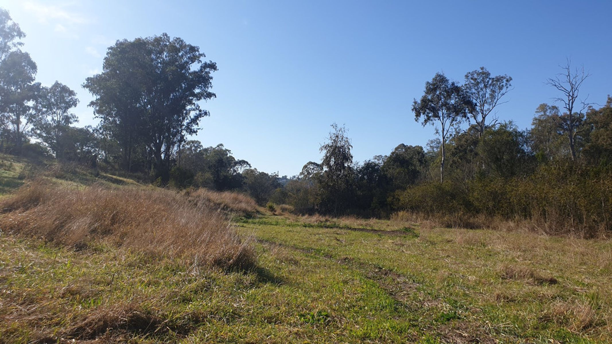1 Tiger Street, Sadliers Crossing, QLD 4305