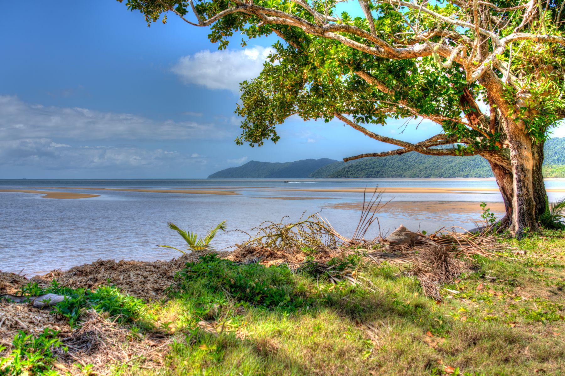 58-60 BAY ROAD, Coconuts, QLD 4860