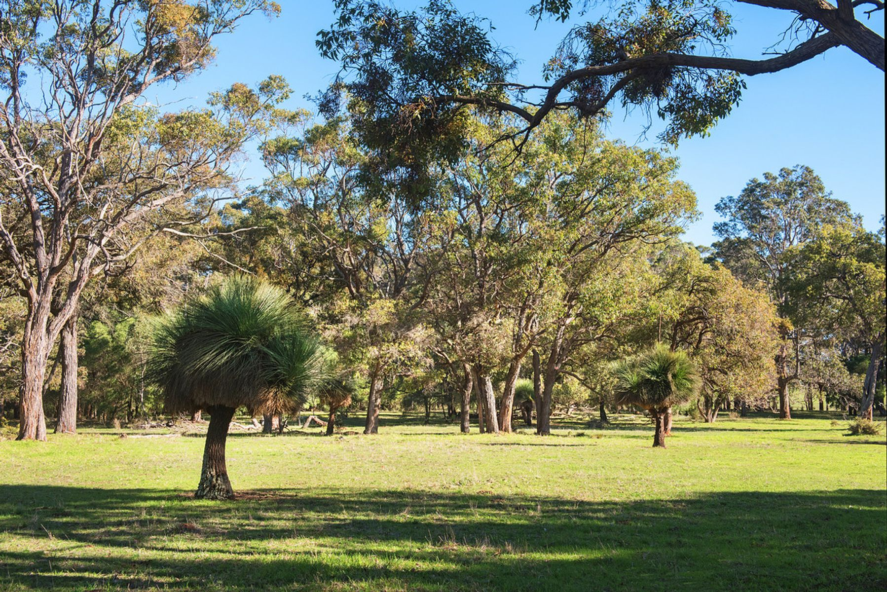 Lot P/L 1001 Redgate Road, Margaret River, WA 6285