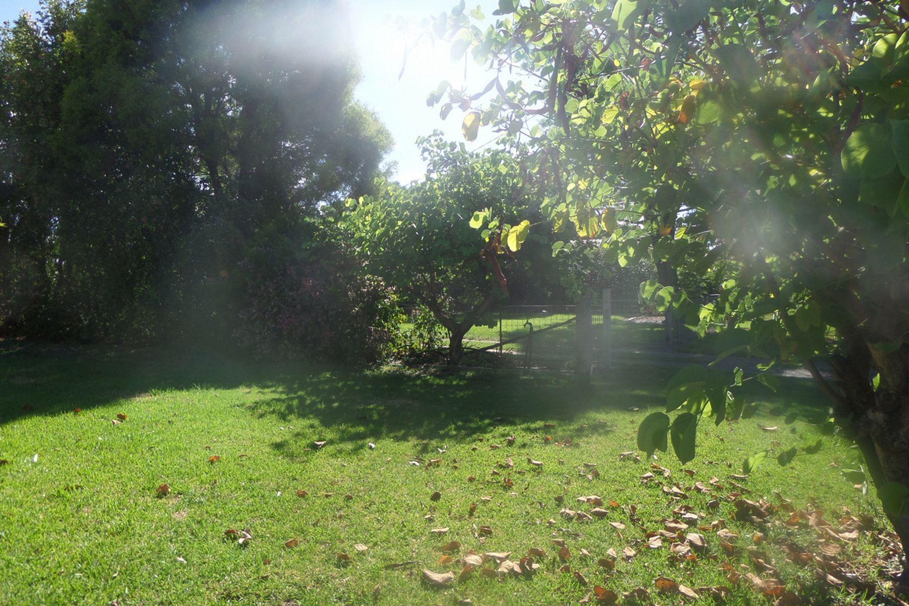 GOONDIWINDI