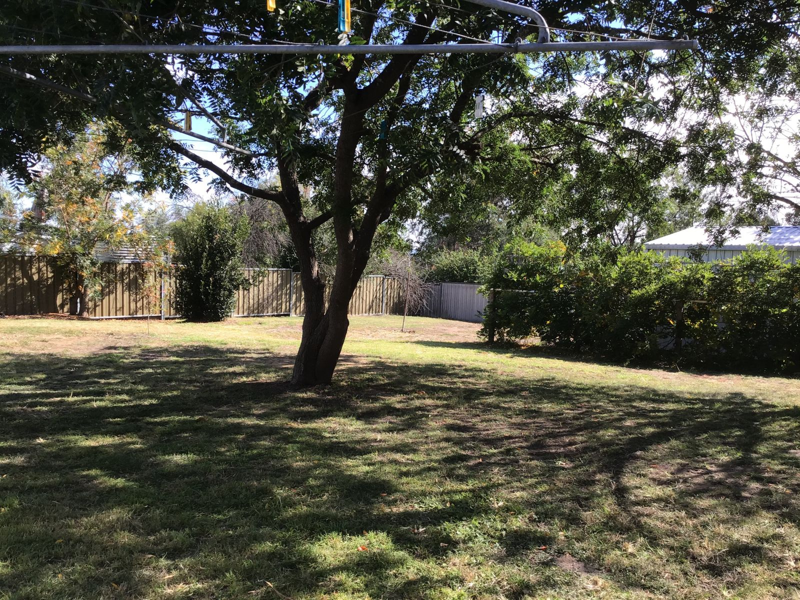 260 Douglas Street, Tenterfield, NSW 2372