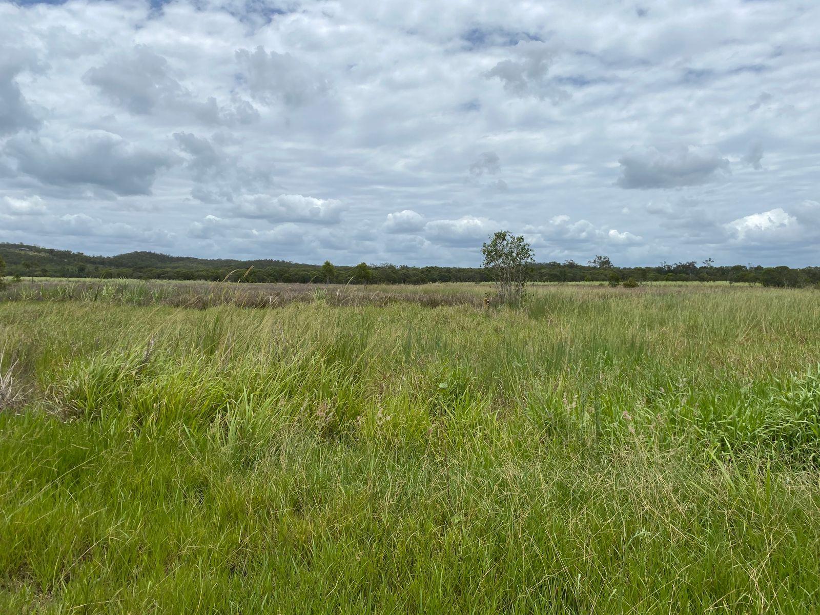 135 Ilbilbie Road, Ilbilbie, QLD 4738