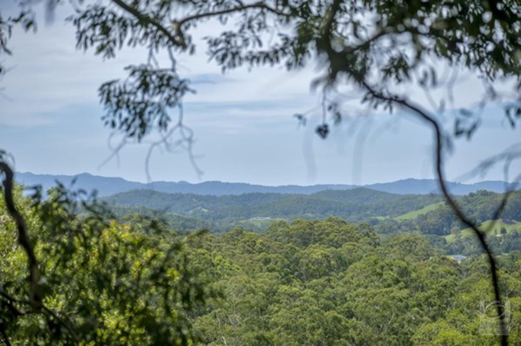 Lot 239 Smiths Creek Road, Stokers Siding, NSW 2484