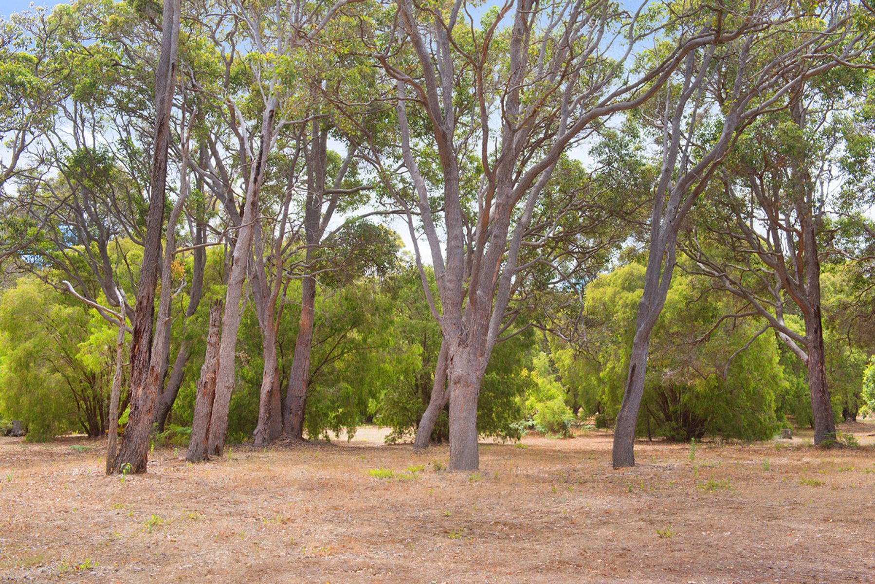 Ironstone Place Subdivision Stage 2, Margaret River, WA 6285