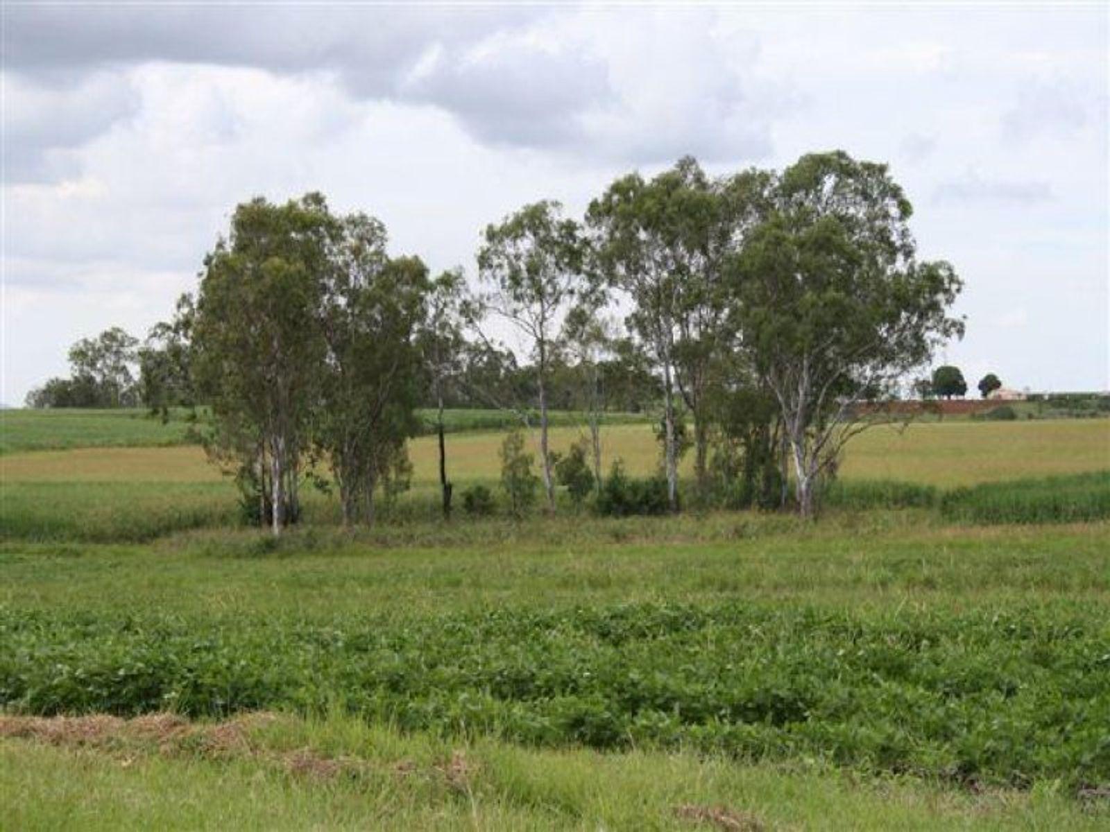 Elleray, Gin Gin, QLD 4671
