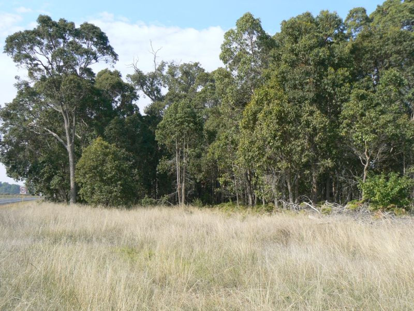 Lot 201 South Western Highway, Donnybrook, WA 6239